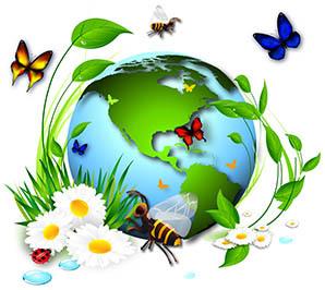 """Résultat de recherche d'images pour """"biodiversité"""""""