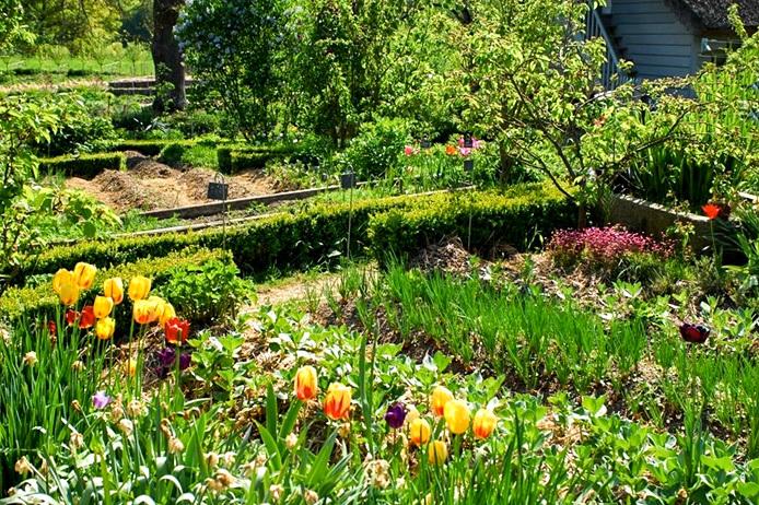 cultiver un jardin - Jardin Permaculture